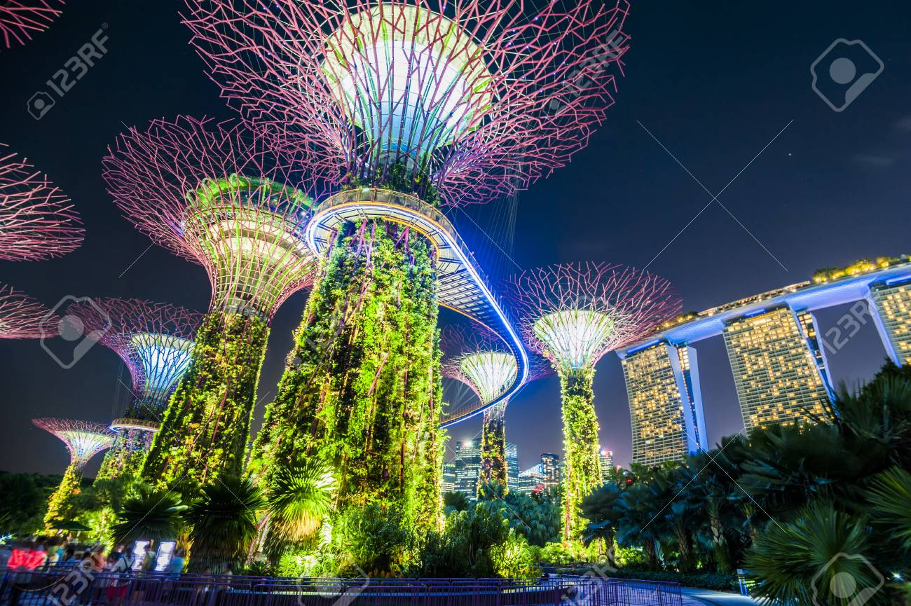 Supertree grove at garden by the bay in singapore