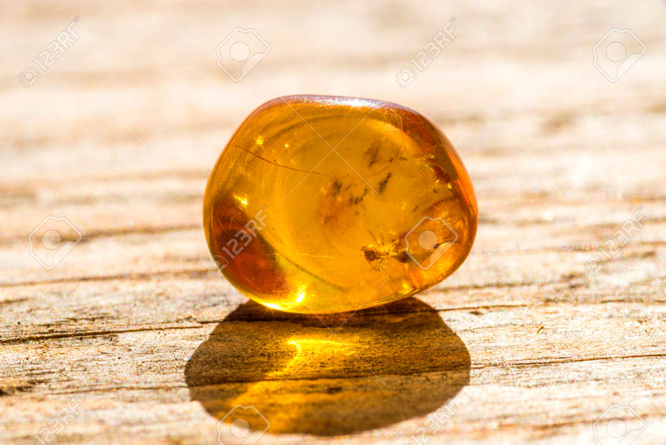 Amber with embedded insect - 75468329
