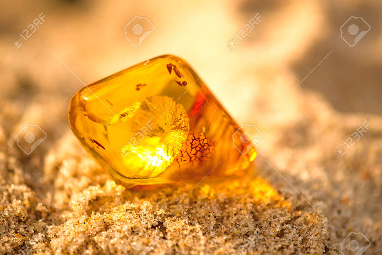 Amber on a beach of the Baltic Sea - 89202694