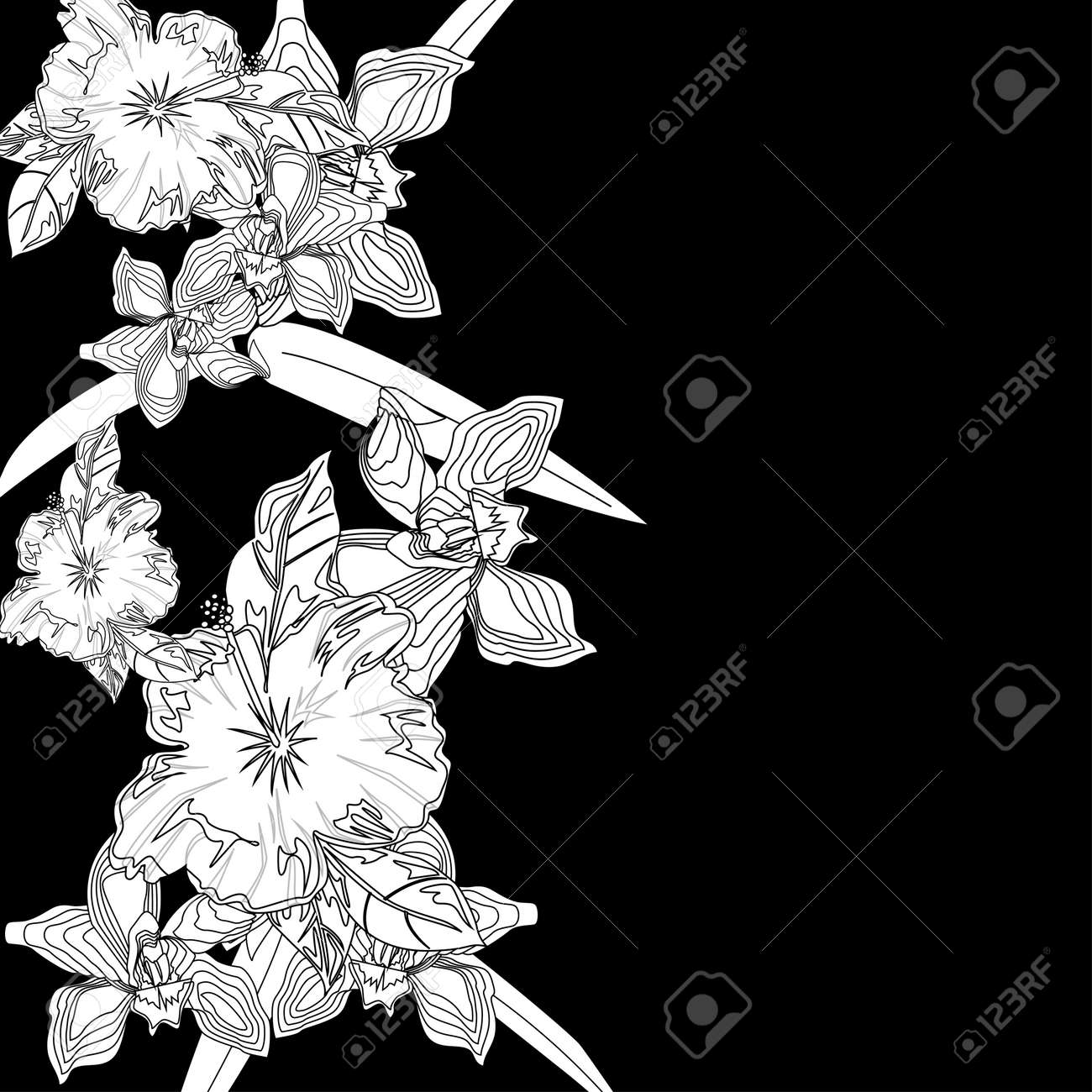 Black and white background with white flowers royalty free black and white background with white flowers stok fotoraf 19534685 mightylinksfo