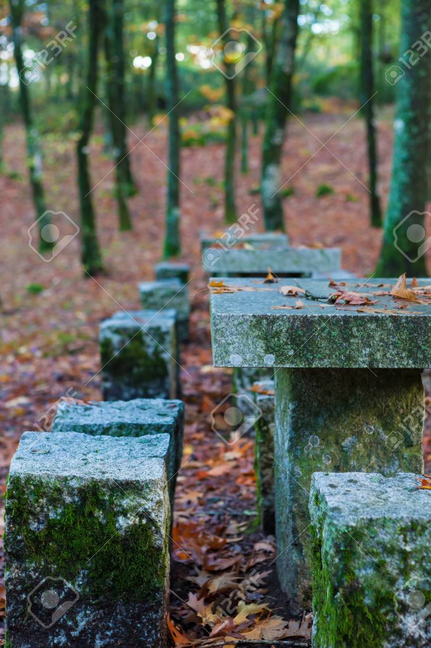 Autumn shot of the portuguese national park of geres Stock Photo - 17124278