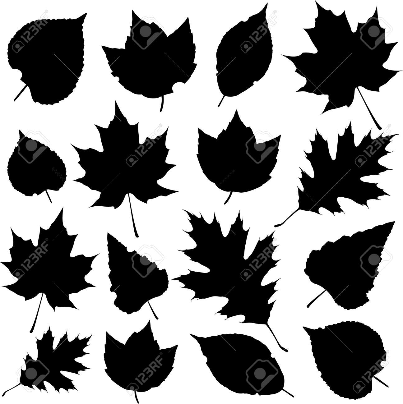 Vector Leaf Silhouettes