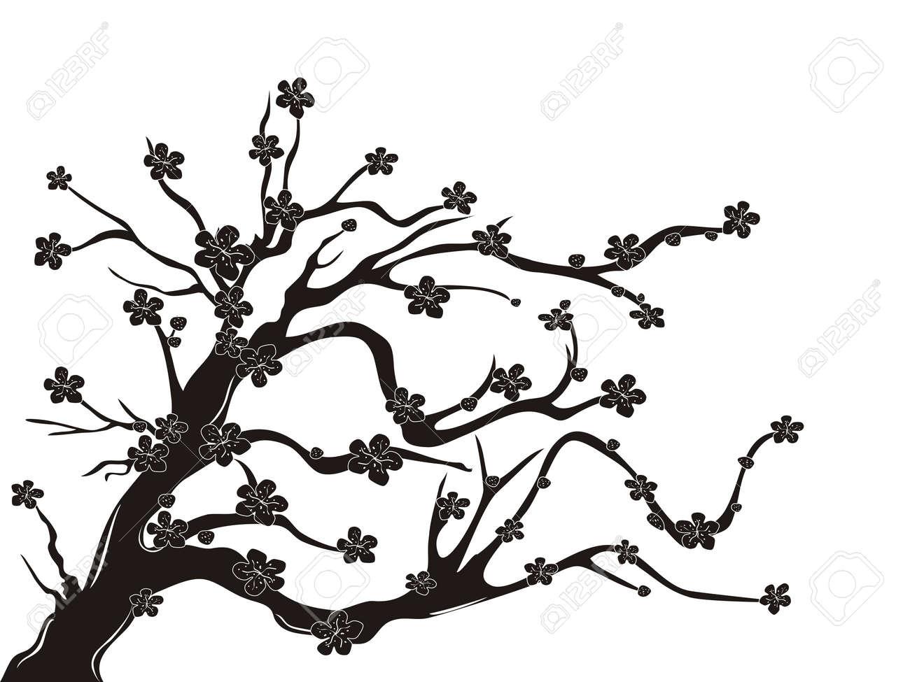 La Silueta Del árbol De Cerezo Sobre Fondo Blanco Ilustraciones