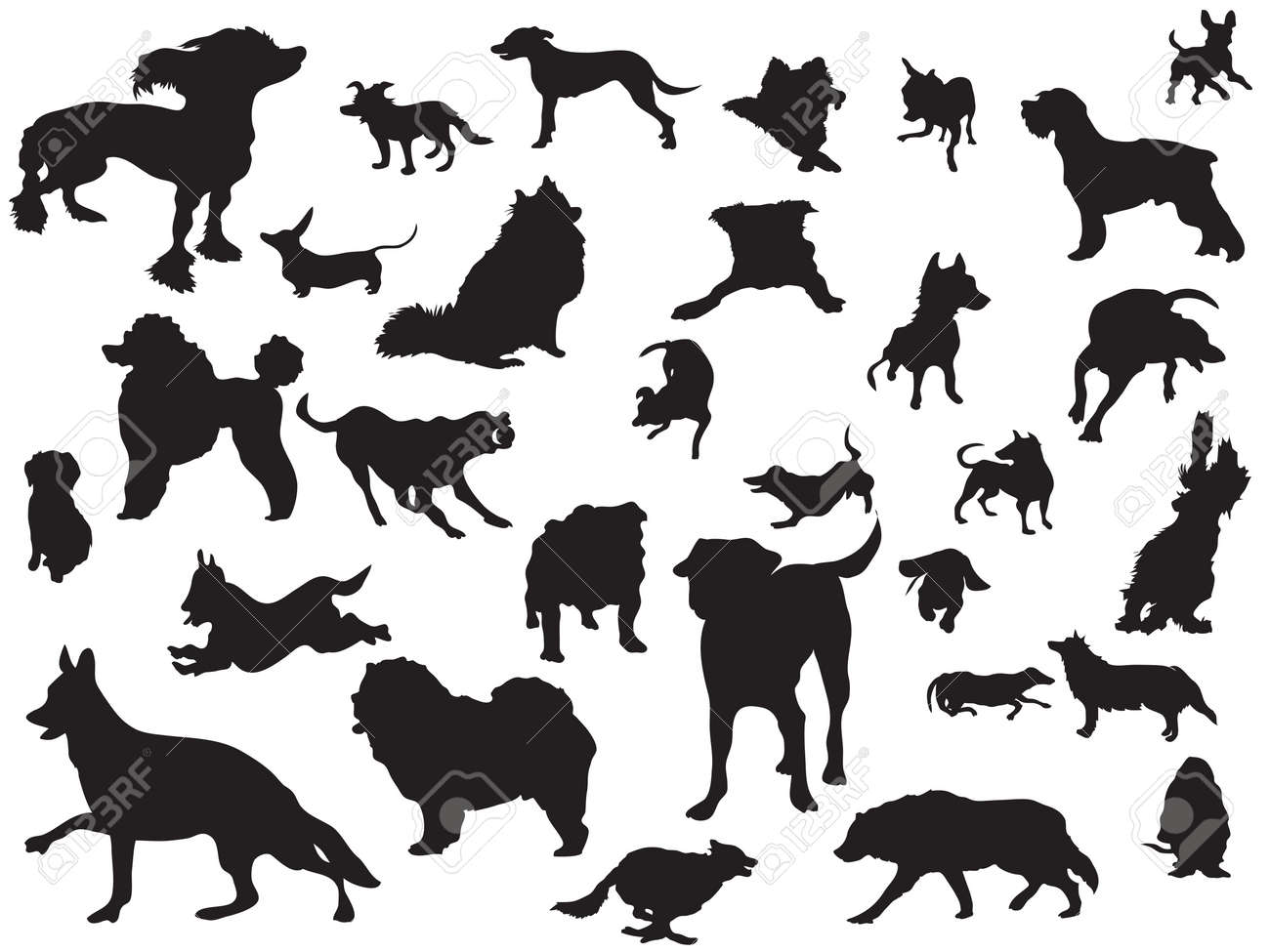 the set of dogs silhouette Stock Vector - 9920749