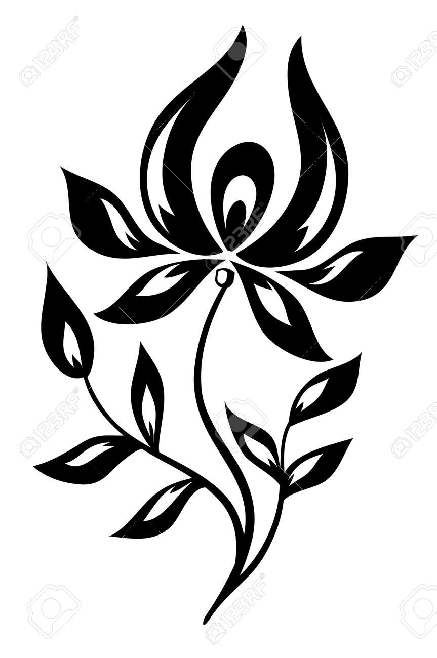 isolated black and white flower - 17665939