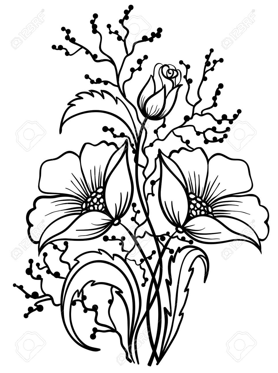 Arrangement of flowers black and white. Outline drawing of lines Stock Vector - 18567928