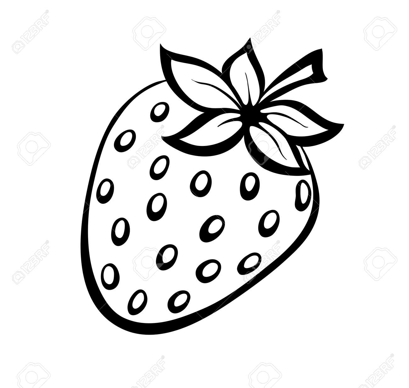 monochrome illustration of strawberries . Many similarities to the author's profile - 22028250