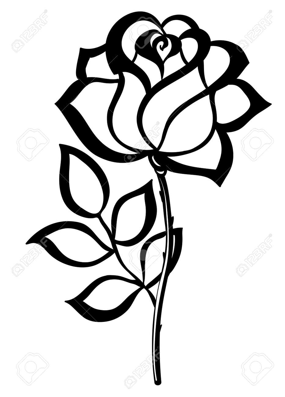 black silhouette outline rose, isolated on white Many similarities in the profile of the artist - 22032847