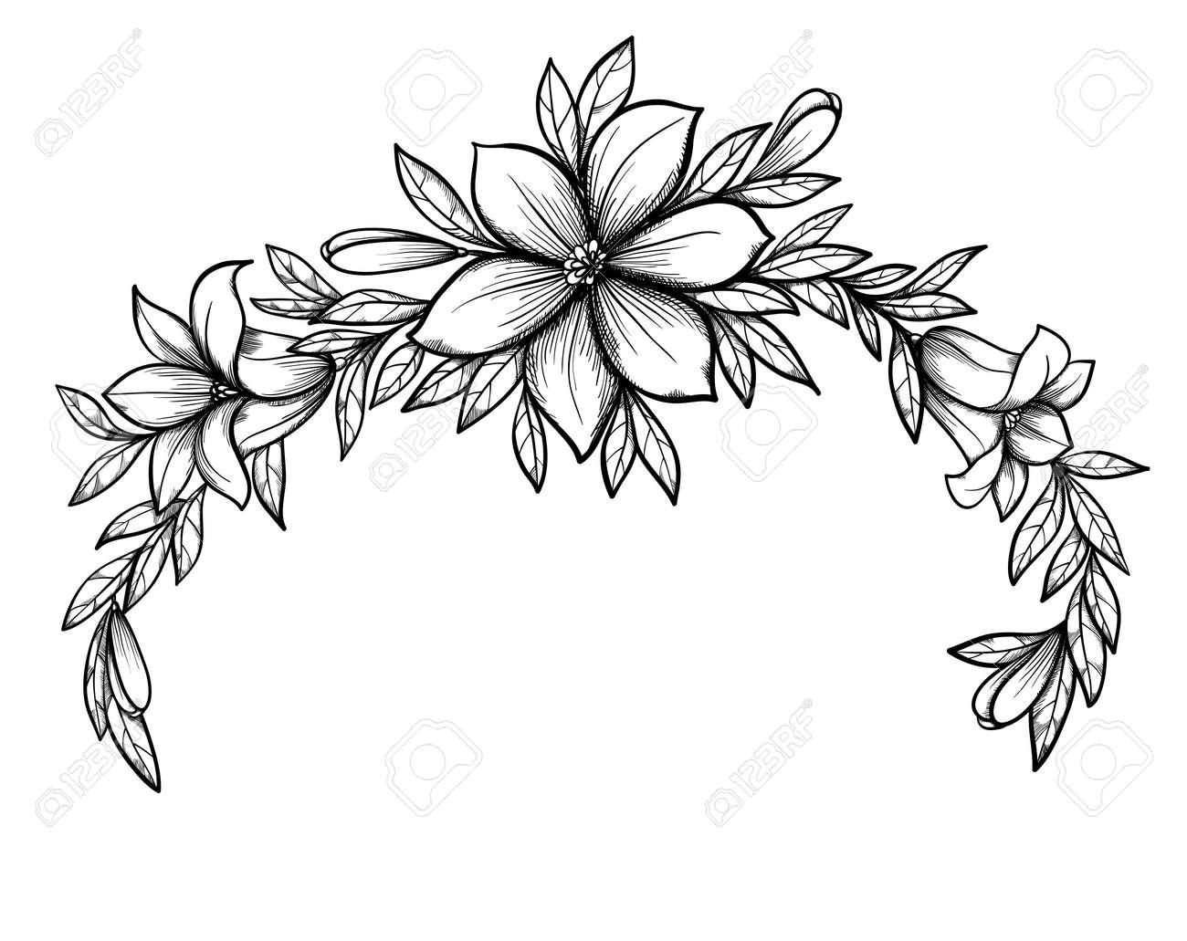 Hermoso Dibujo Grafico Lily Rama Con Hojas Y Brotes De Las Flores De