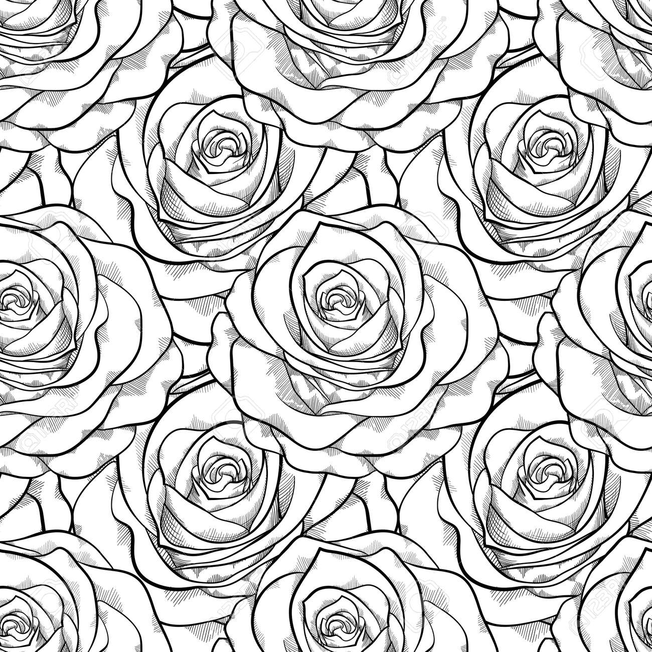 Beautiful Black And White Seamless Pattern In Roses With Contours ...