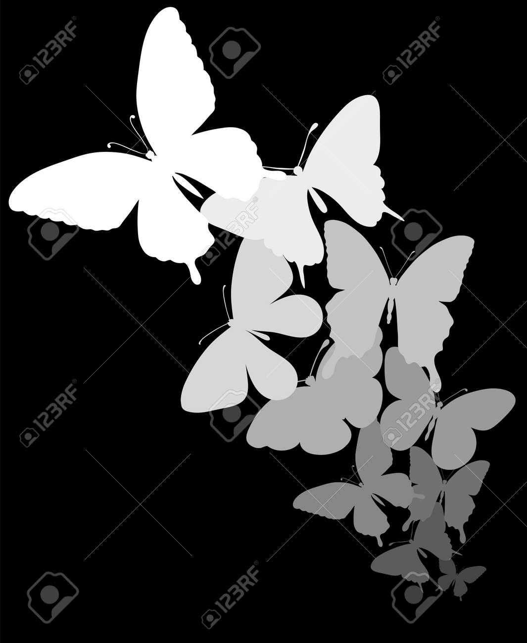 Frontera De Las Mariposas Que Vuelan Con El Espacio Para El Mensaje