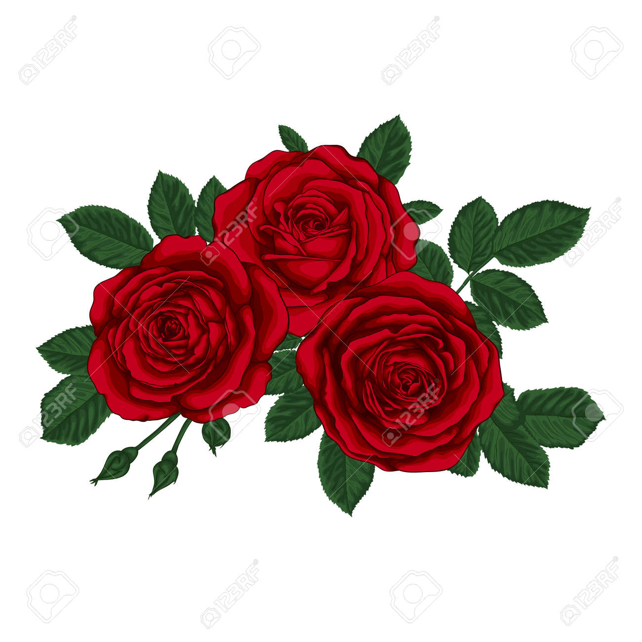 Hermoso Ramo De Tres Rosas Rojas Y Hojas Arreglo Floral Tarjeta De Felicitación Del Diseño Y La Invitación De La Boda Cumpleaños San Valentín El