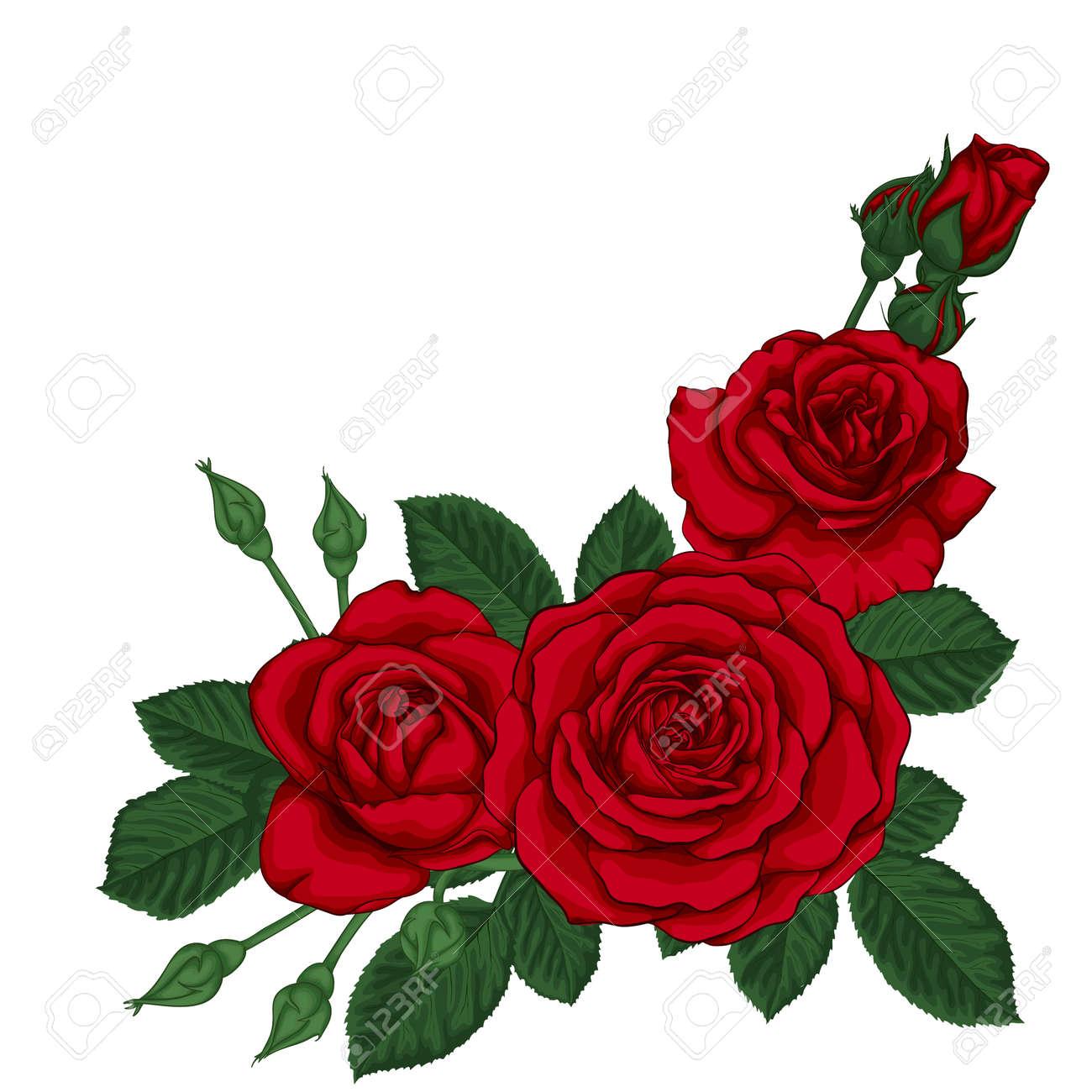 Hermoso Ramo De Tres Rosas Rojas Y Hojas Arreglo Floral Tarjeta De