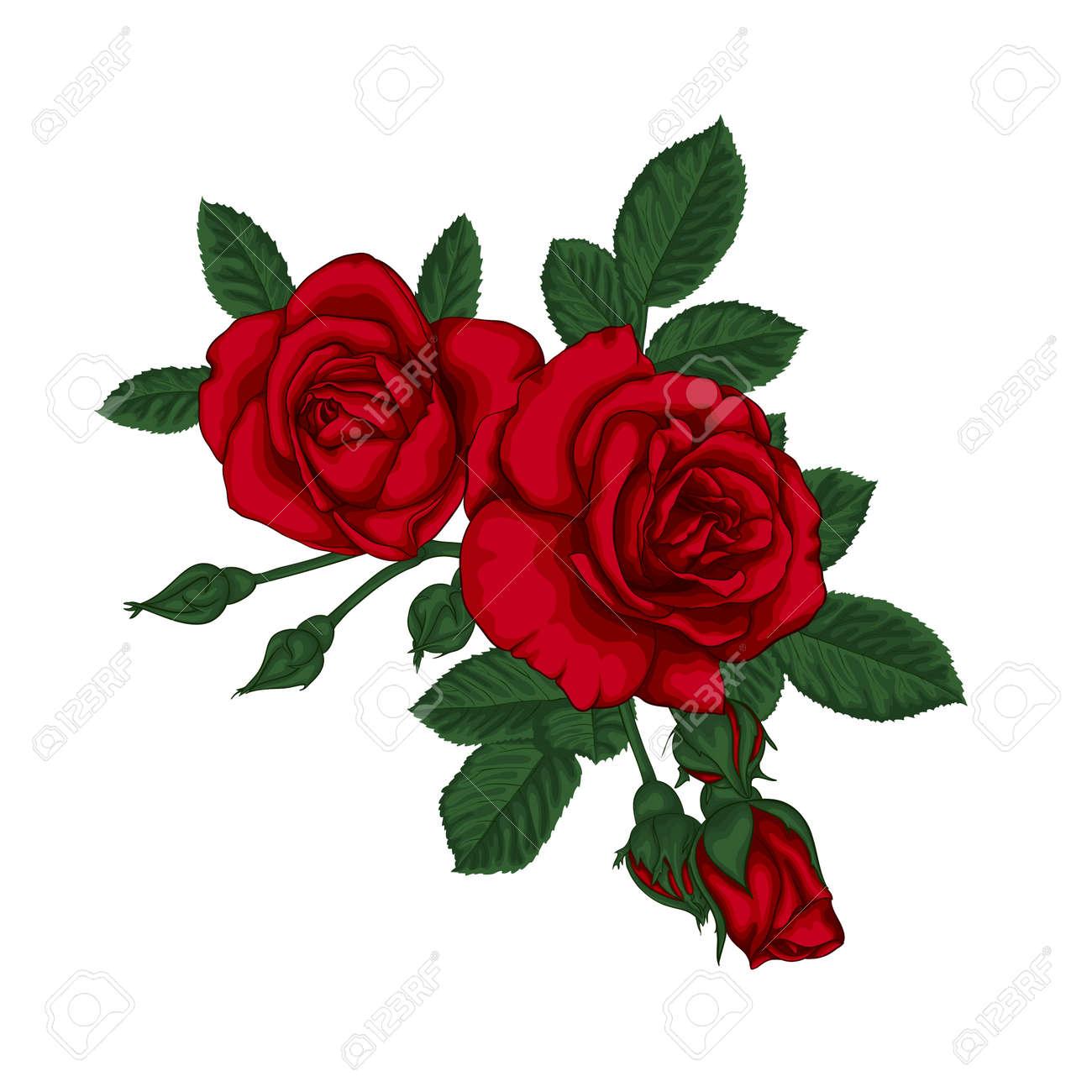 Hermoso Ramo Con Rosas Rojas Y Hojas Arreglo Floral Tarjeta De Felicitación De Diseño E Invitación De La Boda Cumpleaños Día De San Valentín El