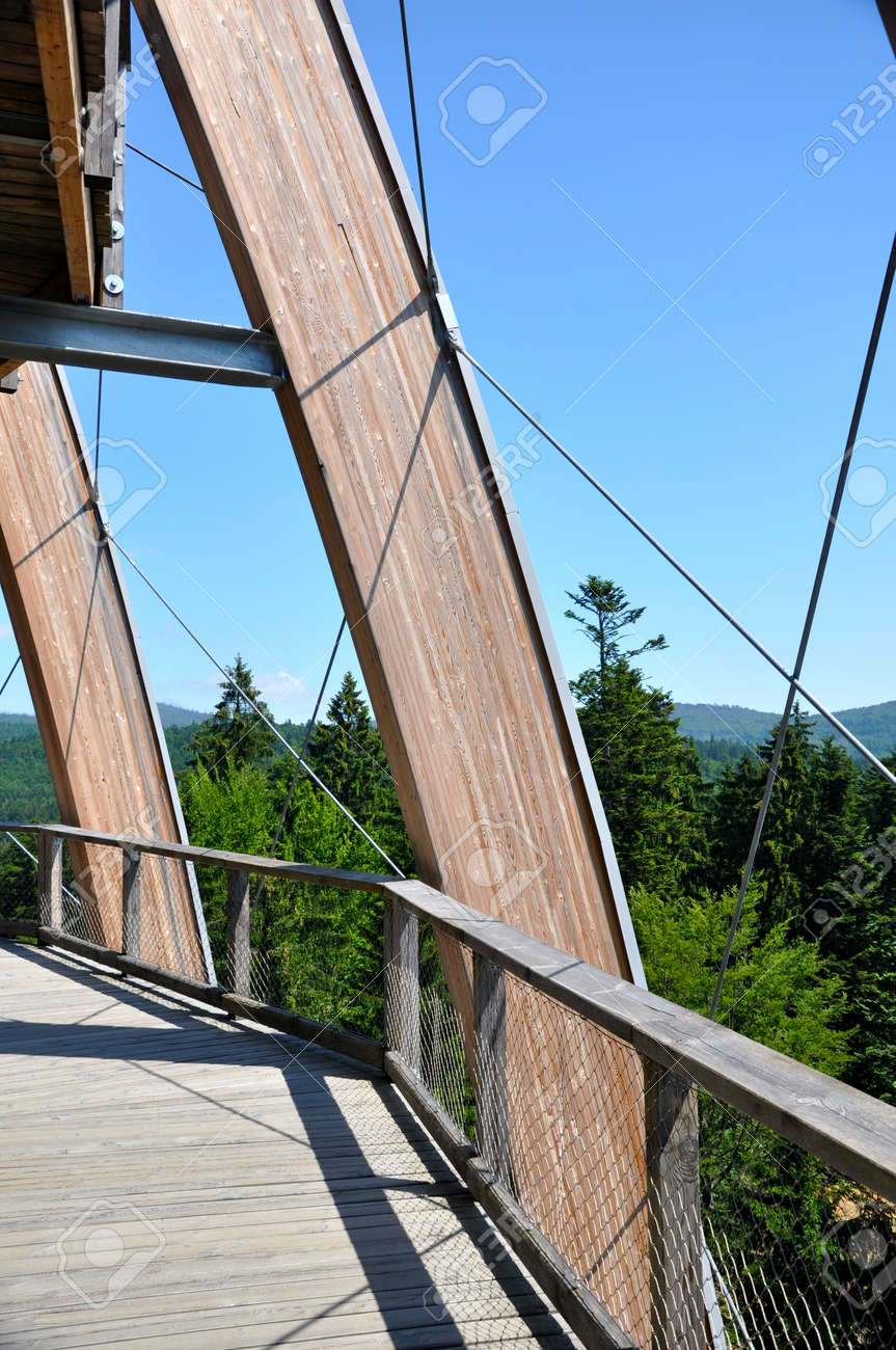 Tree top walk observatory Stock Photo - 13817736