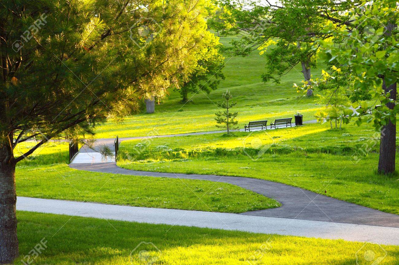 Summer, the park, Afternoon the sunshine Stock Photo - 15865362