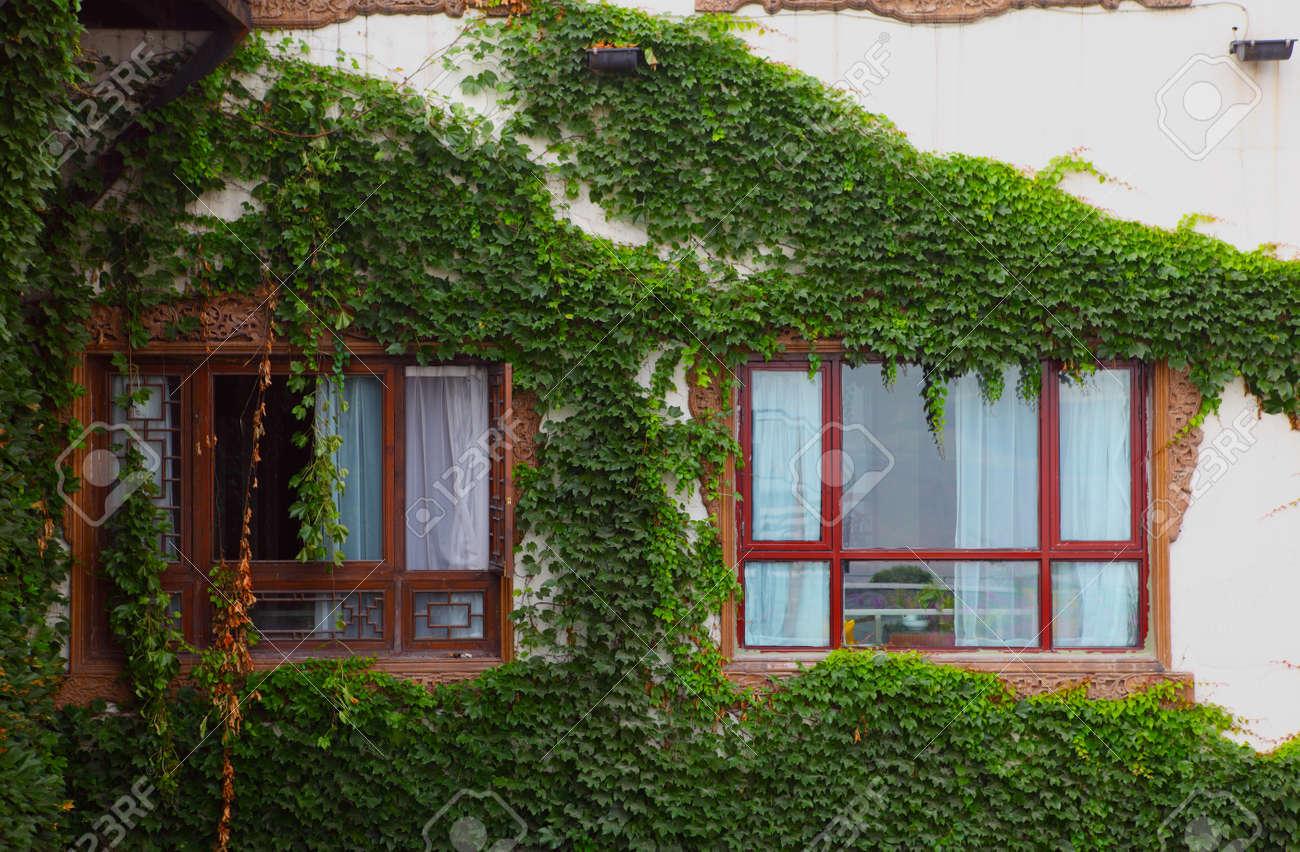 window Stock Photo - 16876514