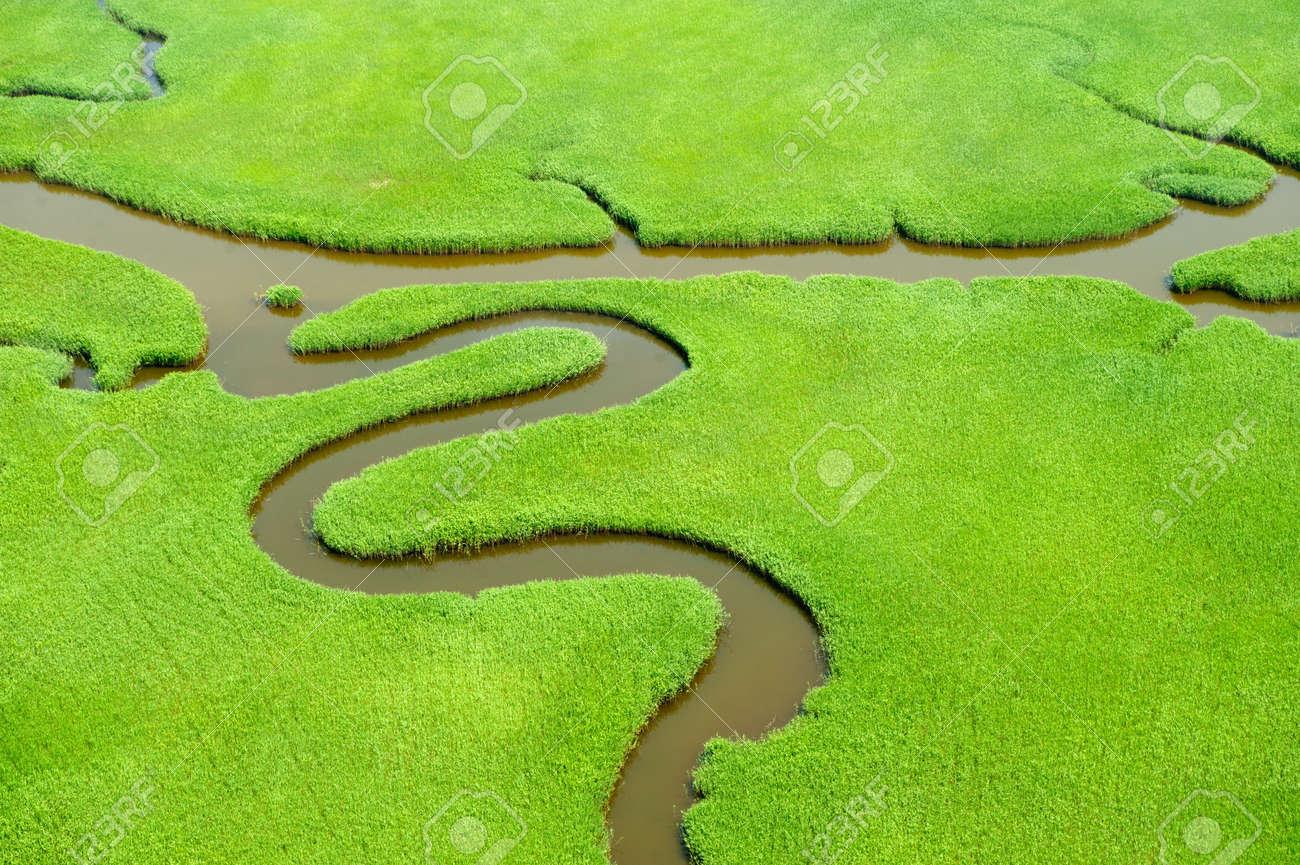 Aerial view of lush coastal wetlands - 18029971
