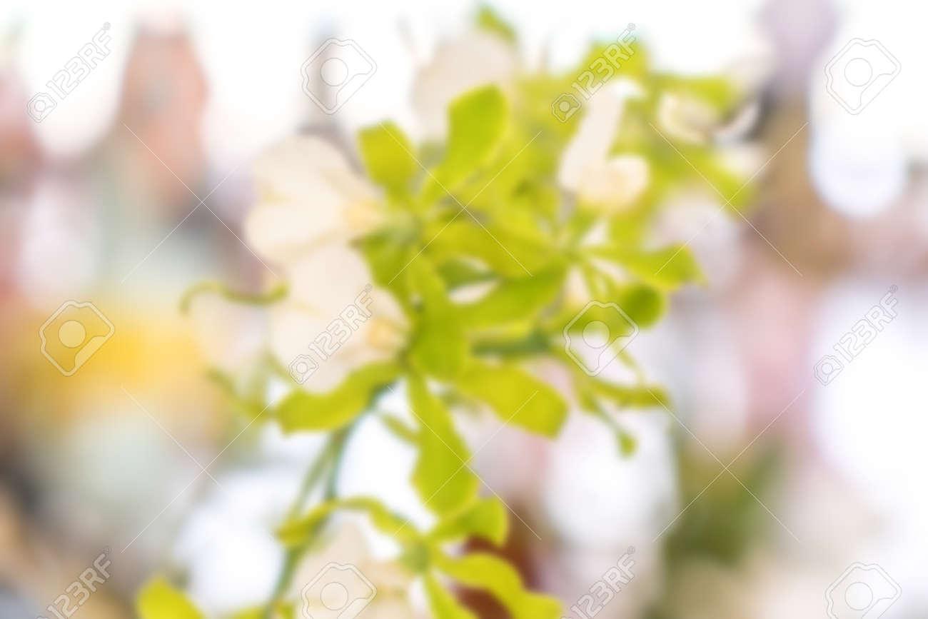Blurred flower background - 119222762