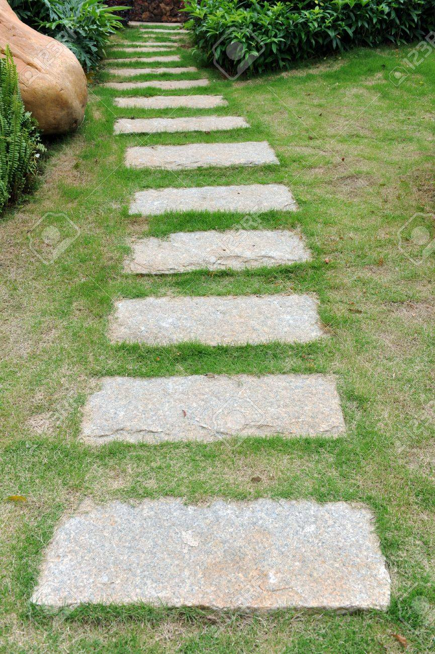 curve stone path in garden, and surrounded by green grass. Stock Photo - 13781536