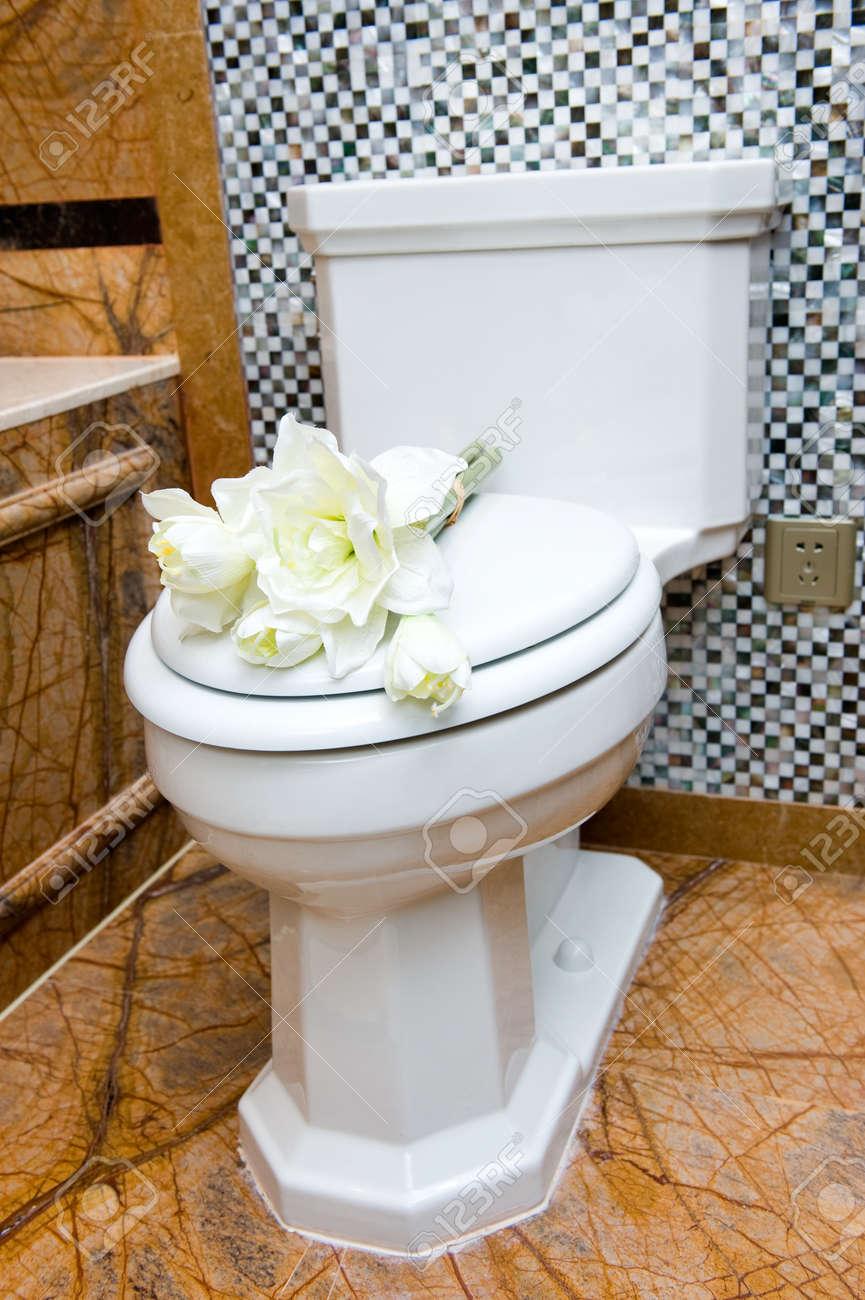 Salle De Bain Futuriste ~ Belle Vue Et Bien Rang D Une Toilette Salle De Bains Dans Une