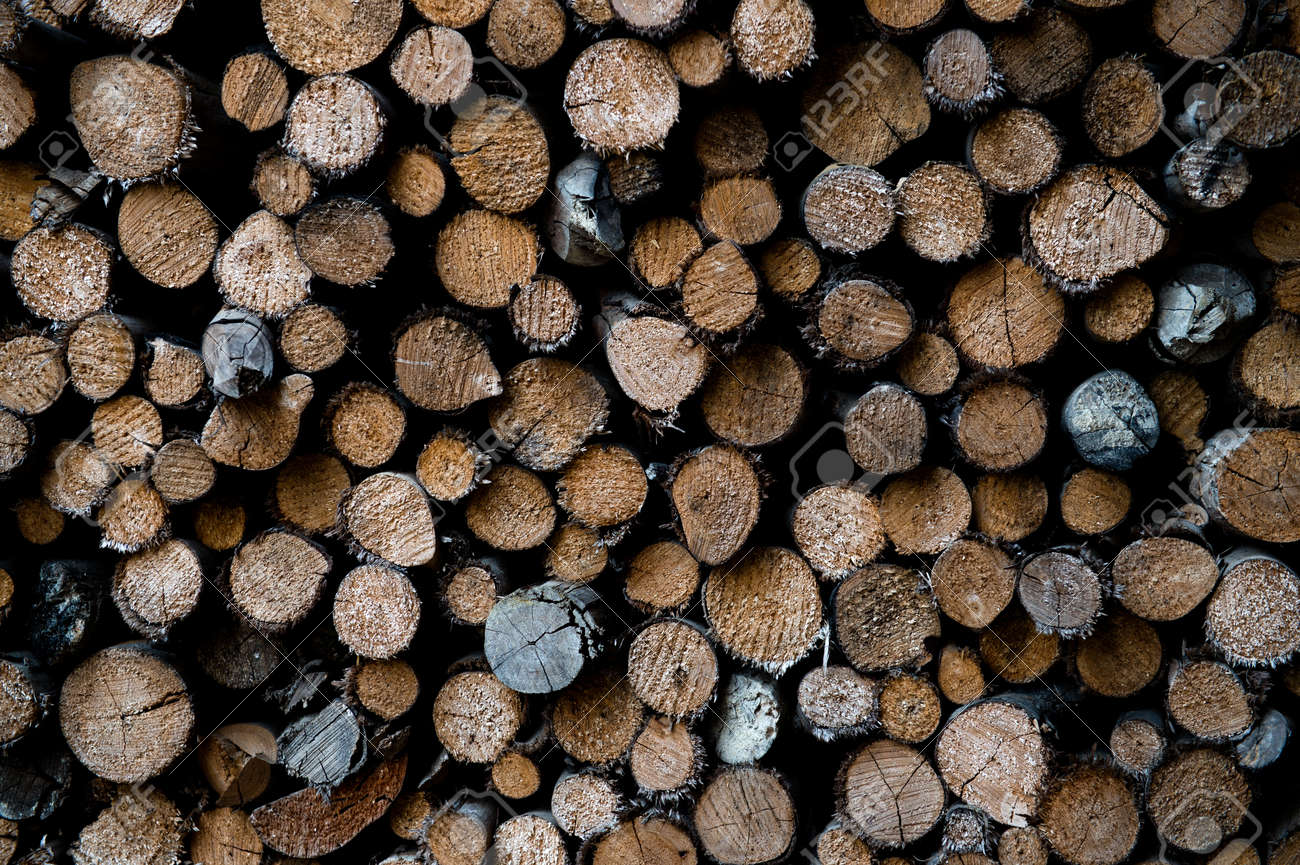 piled tree trunks close up Stock Photo - 17575442