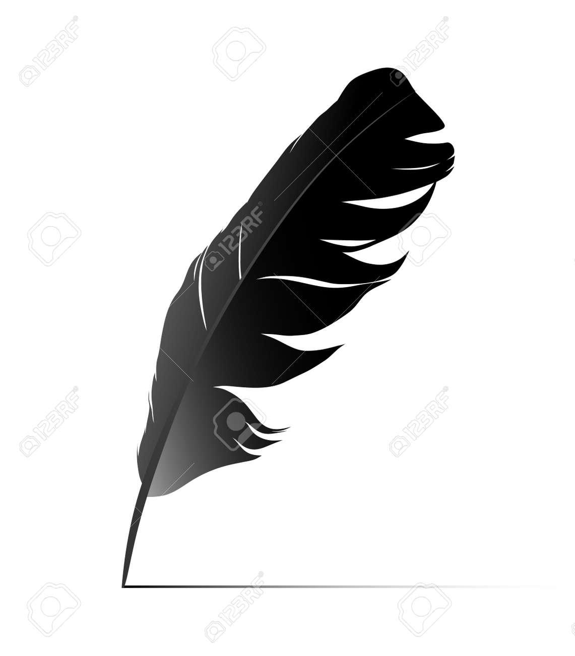 黒の白い背景の上の鳥の羽のイラスト素材ベクタ Image 14988283