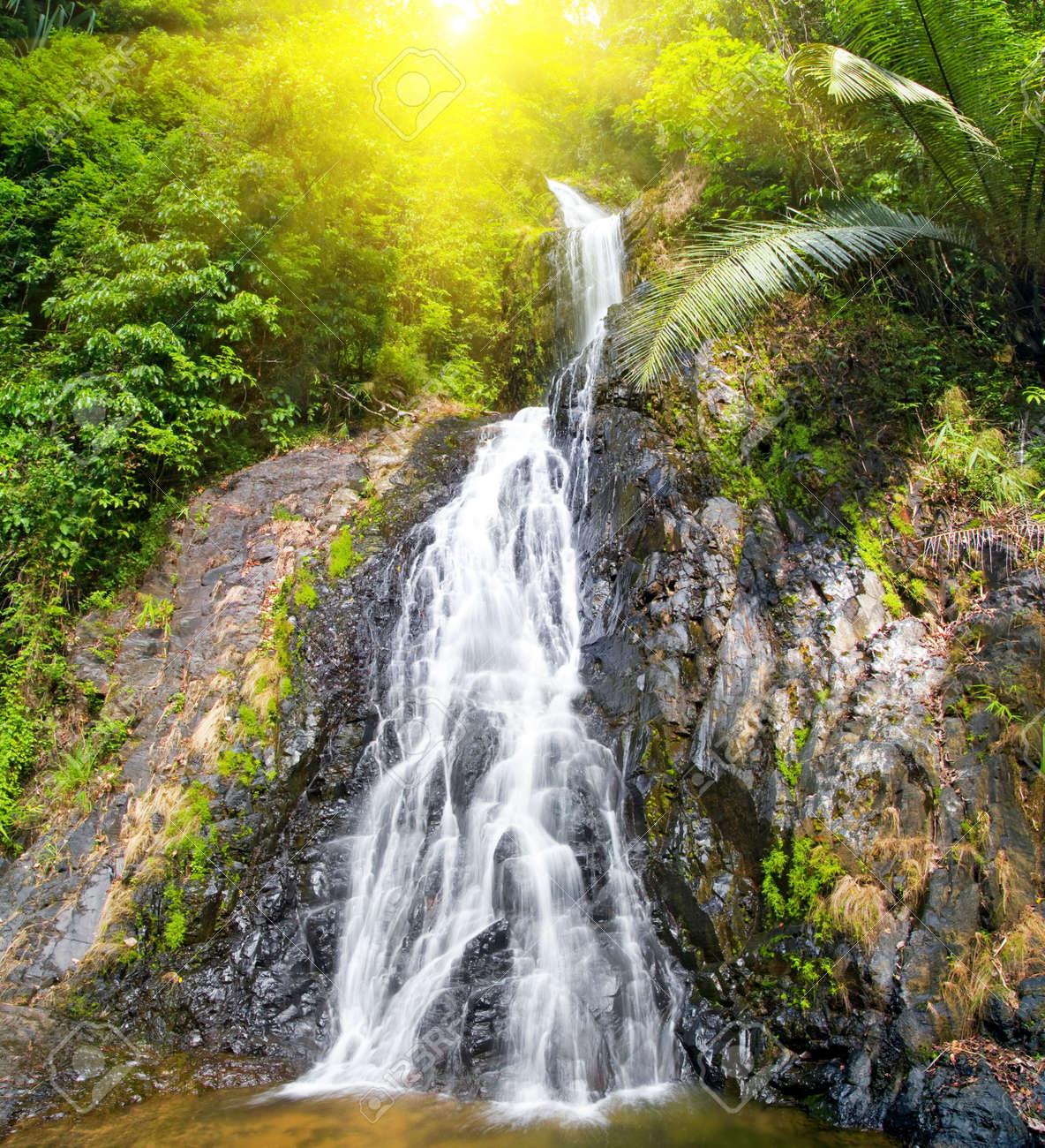 beautiful cascade waterfall Stock Photo - 6485568