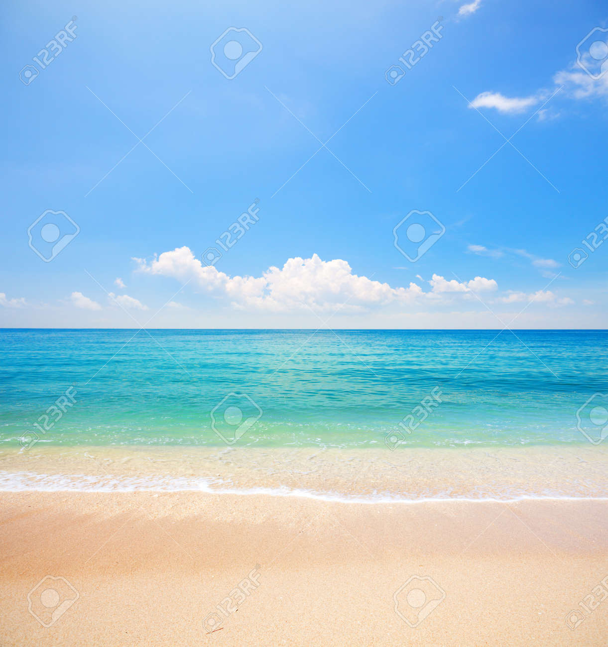 beach and tropical sea - 17336373