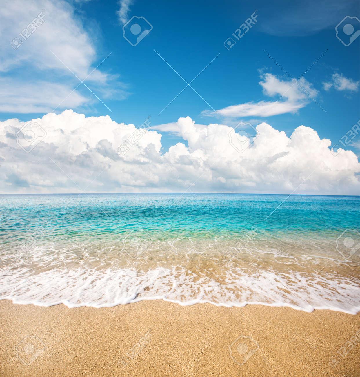 beautiful beach and tropical sea - 147113034
