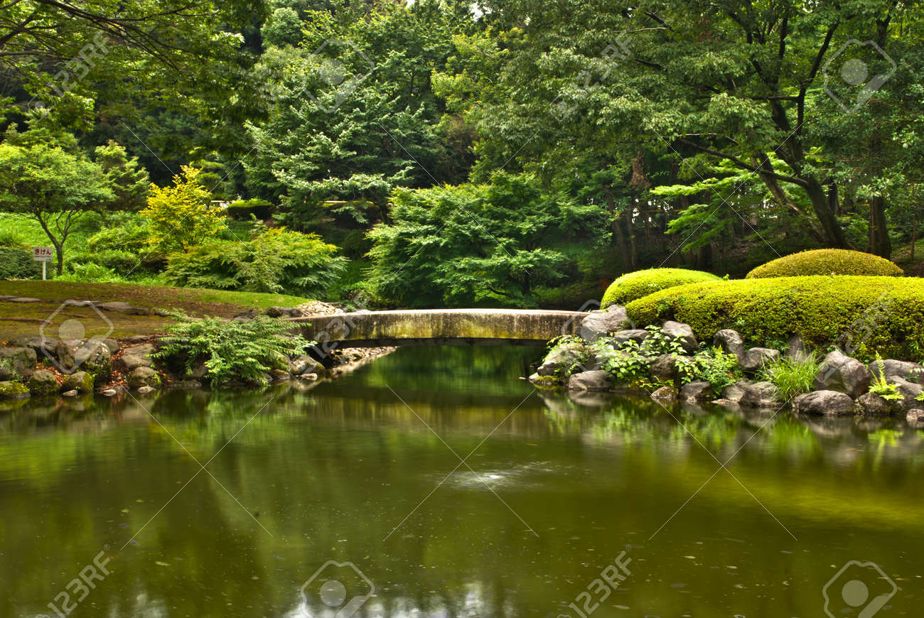 Japanese garden wood bridge surrounded by green foliage in hdr Stock Photo - 14604770
