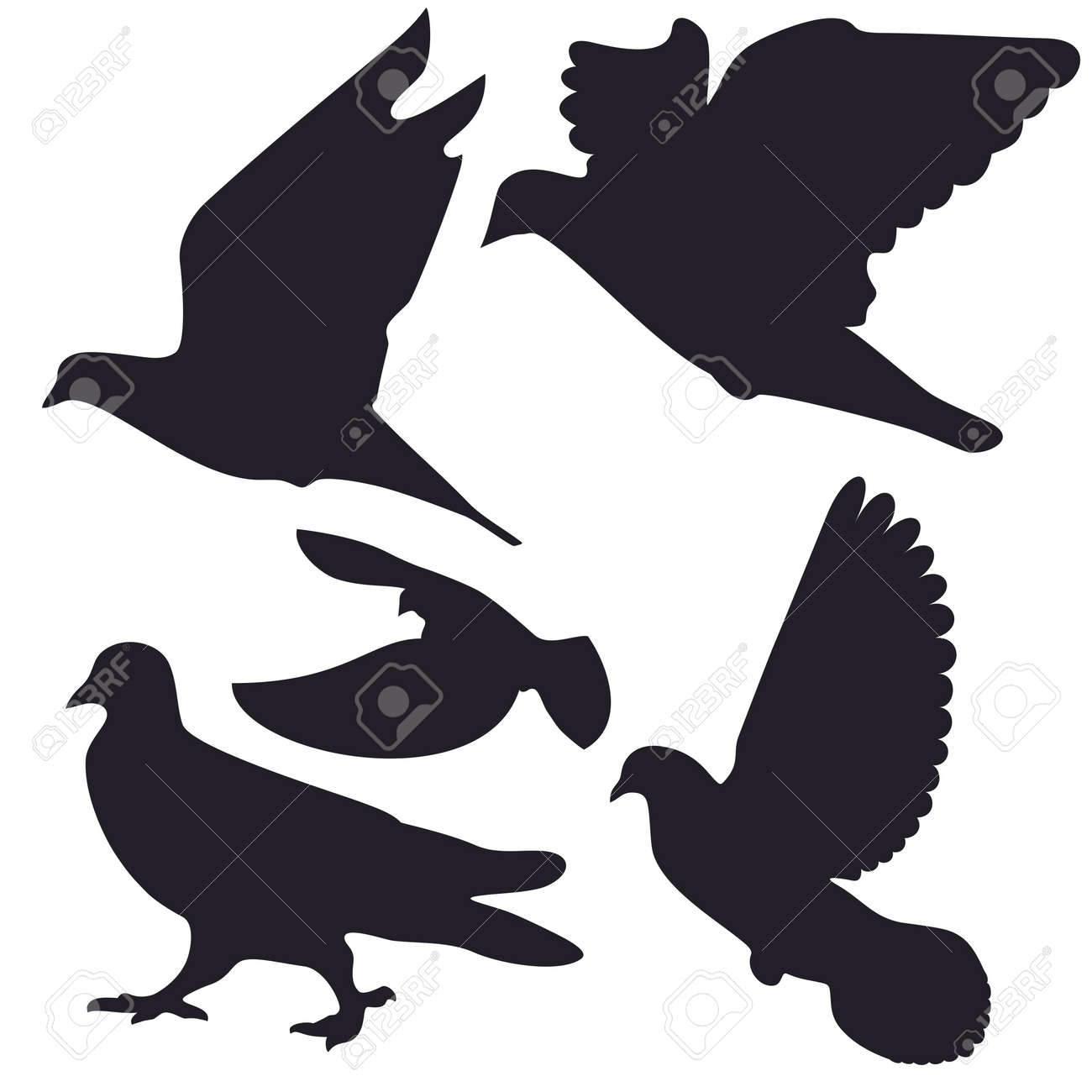 An a vector illustration of Dove   Files included  Illustrator 8 EPS  and JPG Stock Vector - 18219374