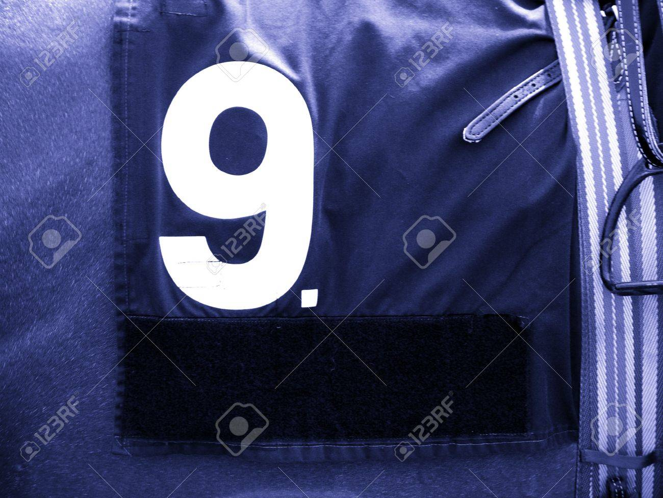 Number 9 Race Horse Stock Photo - 371126