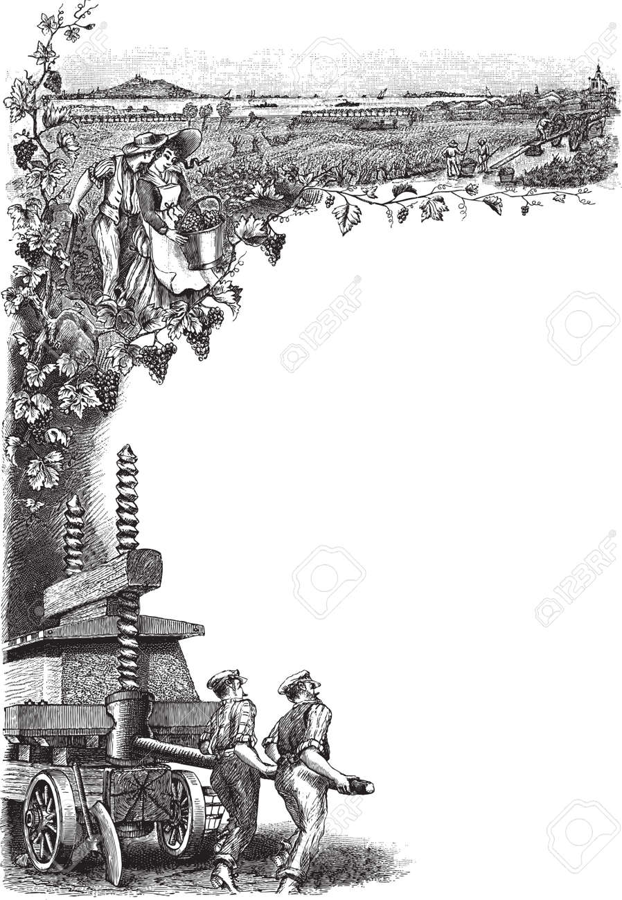 engraved frame detailed engraved frame illustration of workers at vineyard
