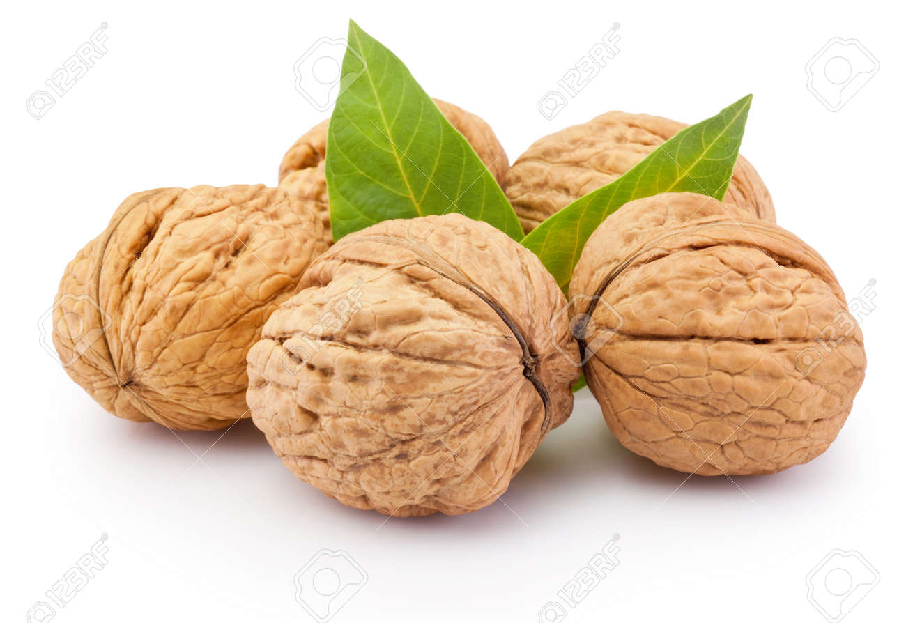 Whole walnut with leafs isolated on a white background - 169444623