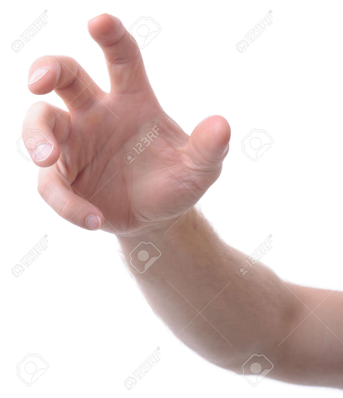 hand isolated on white gesturing grabbing or reaching - 22581488