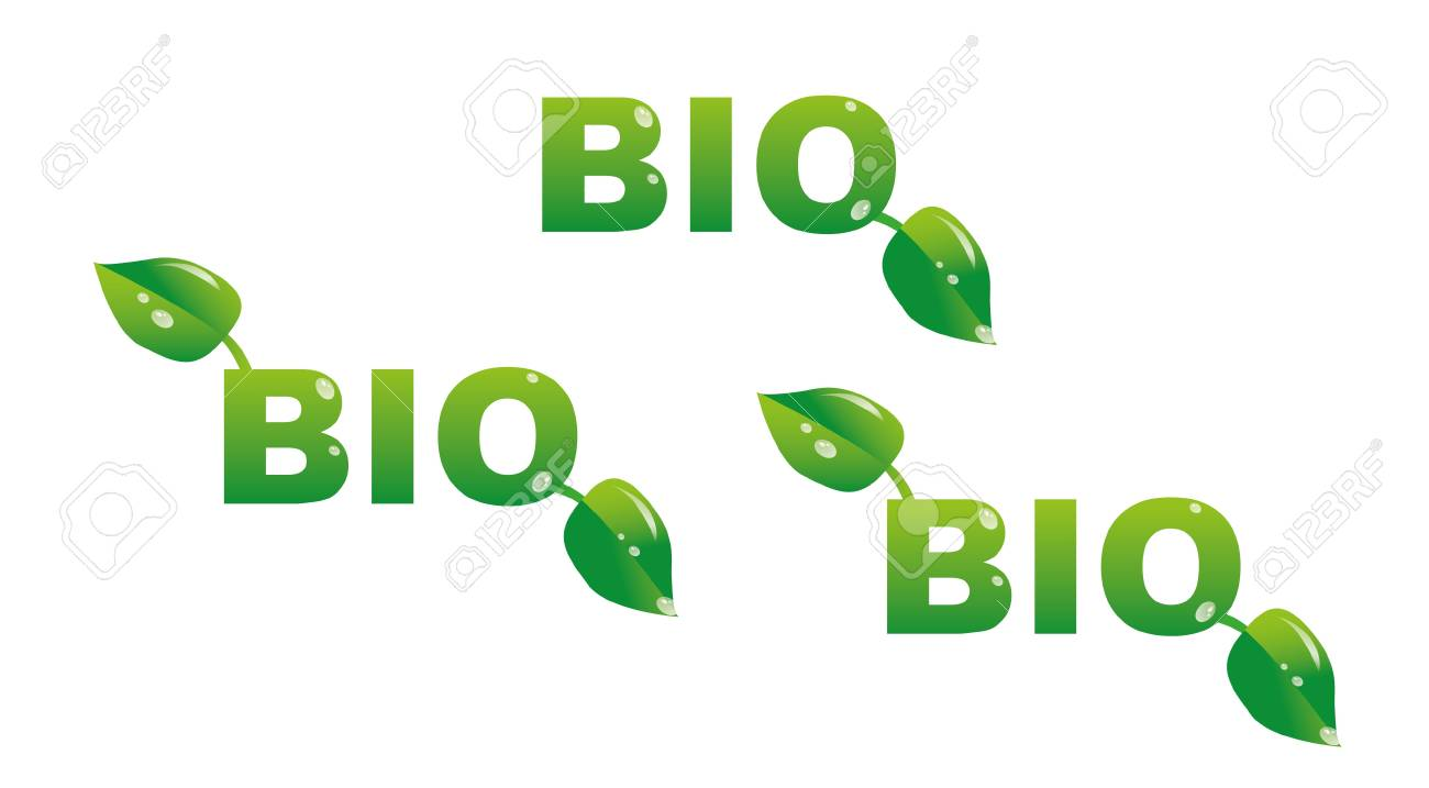 bio tittles with leafs - illustration Stock Vector - 11496927