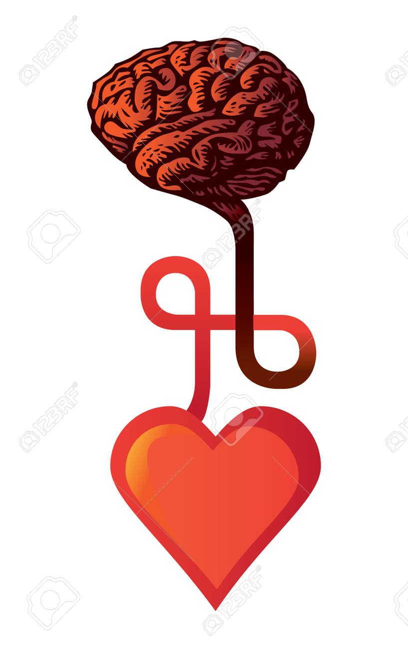 connection between heart and brain - illustration Stock Vector - 11496440