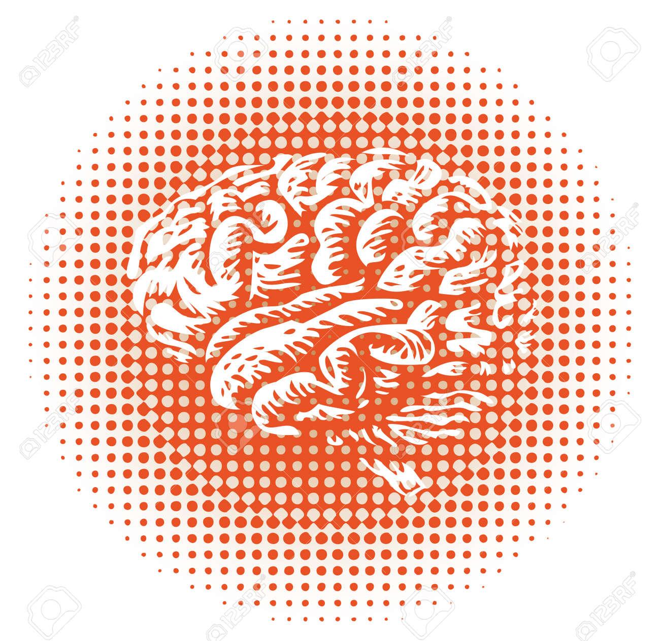 whole human brain isolated - illustration Stock Vector - 14698703