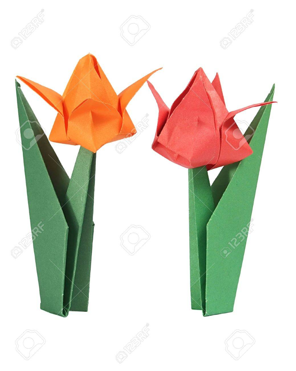 Origami tulip over white stock photo picture and royalty free origami tulip over white stock photo 7602460 jeuxipadfo Image collections