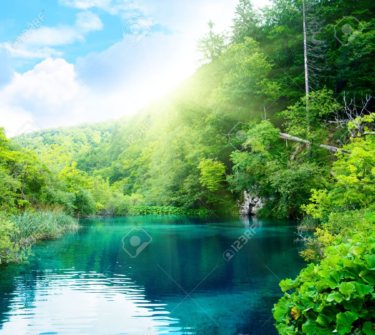lake in deep forest - 4141737