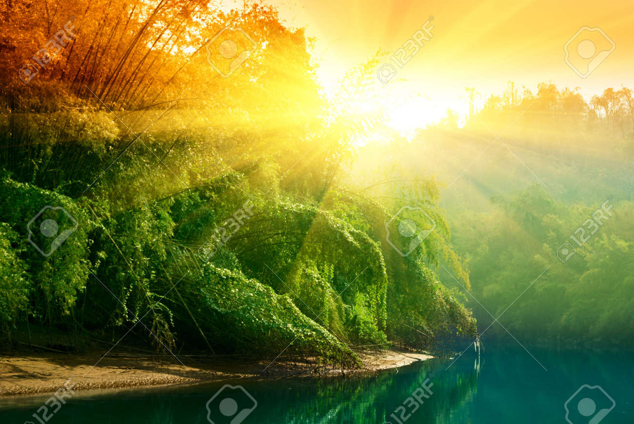 sunset in jungle of Thailand Stock Photo - 4827204