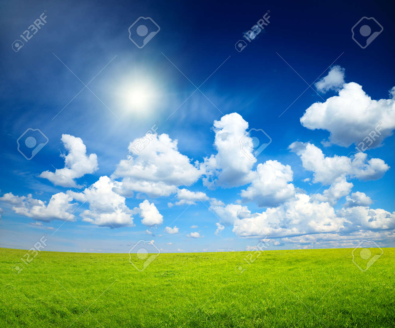 sunny spring day and green field Stock Photo - 5132294