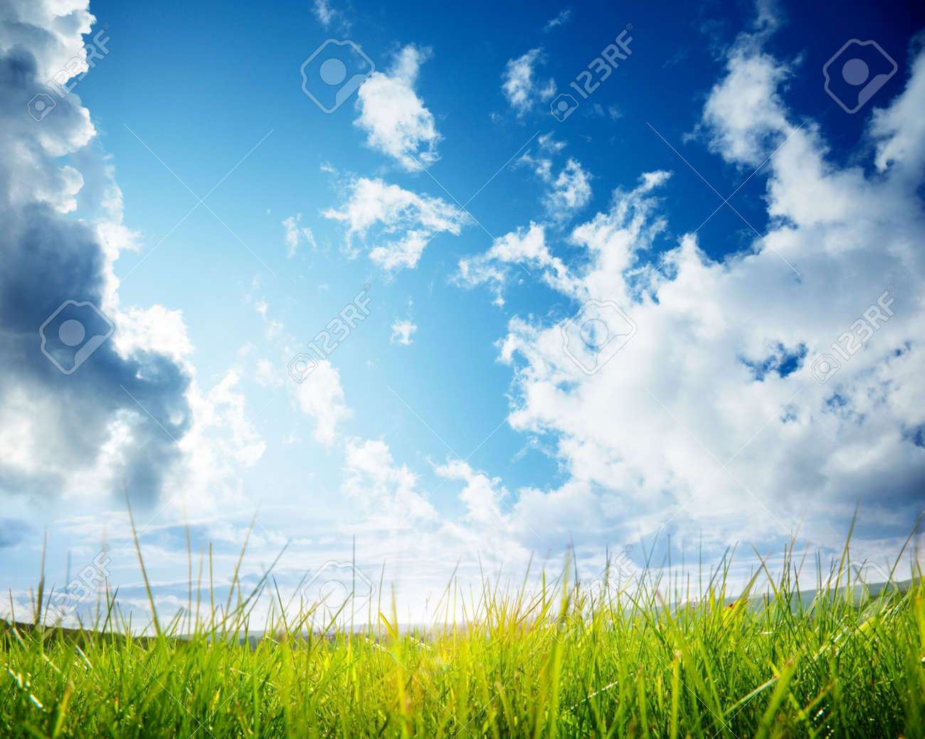 green grass and cloudy sky Stock Photo - 5771317