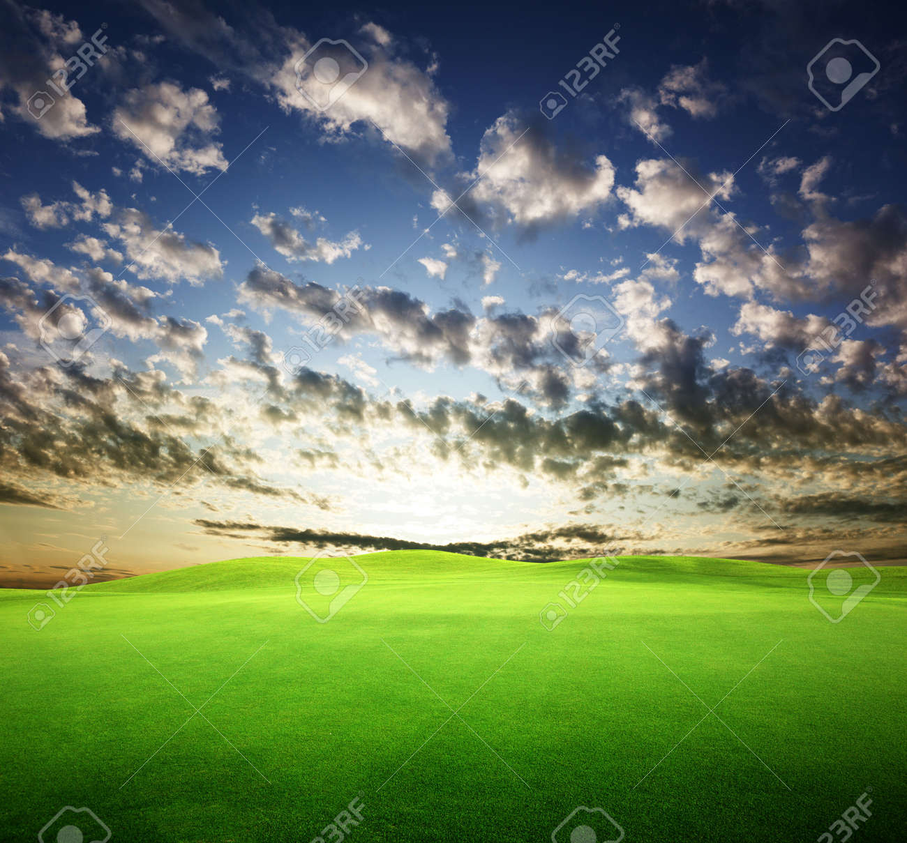 field of grass and perfect sunset sky Stock Photo - 6596863