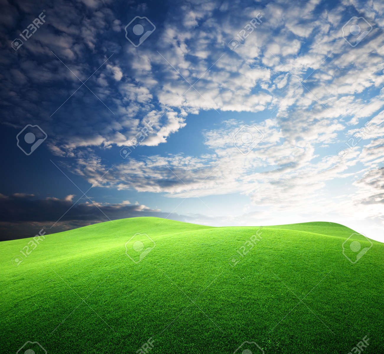 field of grass and sunset Stock Photo - 6648068