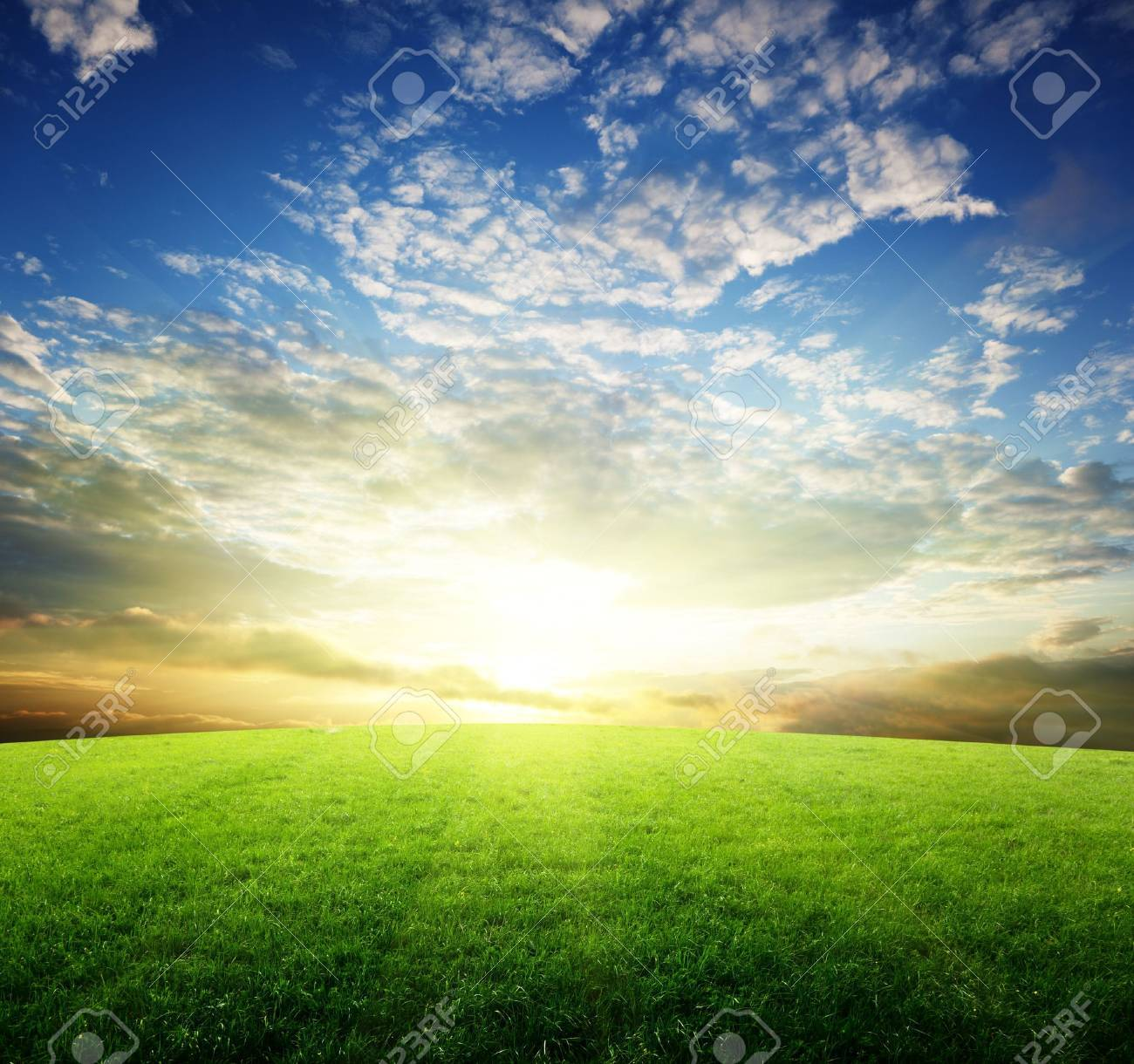 field of grass and sunset Stock Photo - 6738196