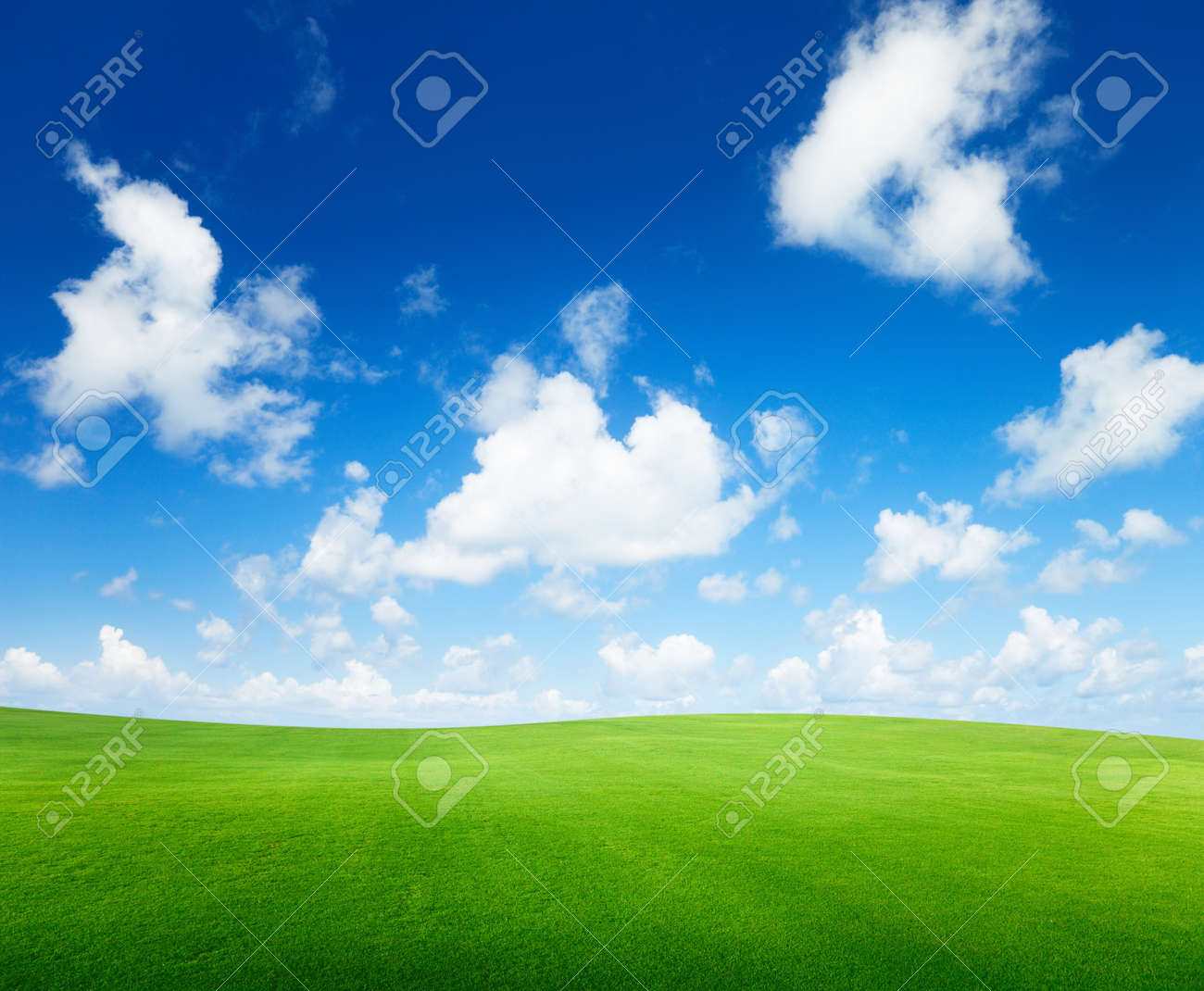 field of grass and perfect sky Stock Photo - 7102272