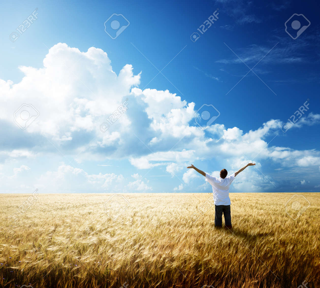 happy young man rest on wheat field Stock Photo - 7784830