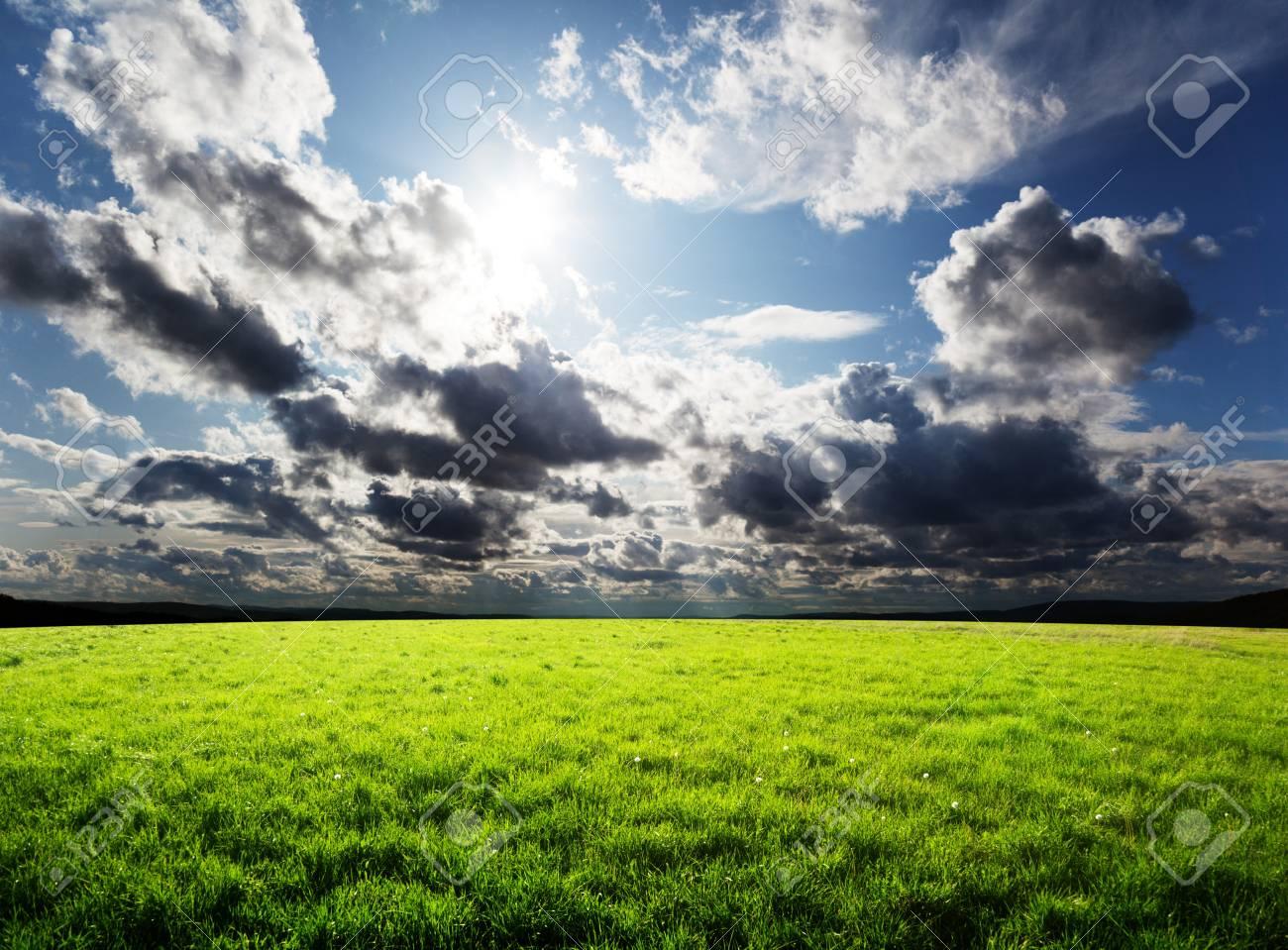 grass and sun Stock Photo - 8240985